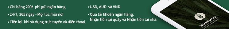 Gửi tiền online về Việt Nam Chất lượng, an toàn, siêu tiện lợi và tiết kiệm nhất.