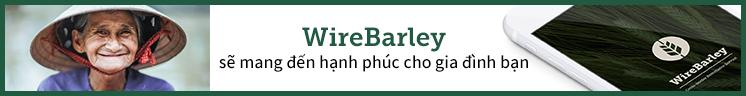 WireBarley chuyển tiền online Chất lượng - An toàn - Tiện lợi và Tiết kiệm nhất